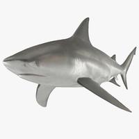 bull shark 3d 3ds