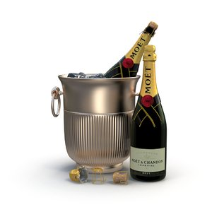 3d model of champagne ice bucket