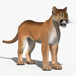 cougar cartoon puma 3d model