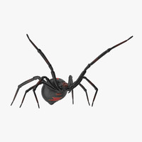 agressive black widow 3d model