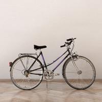 3d old bike