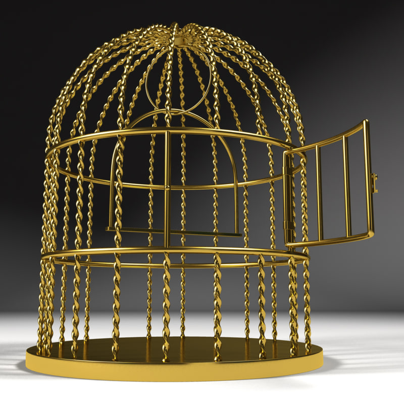 bird cage birdcage 3d max