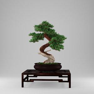 bonsai juniperus 3d max