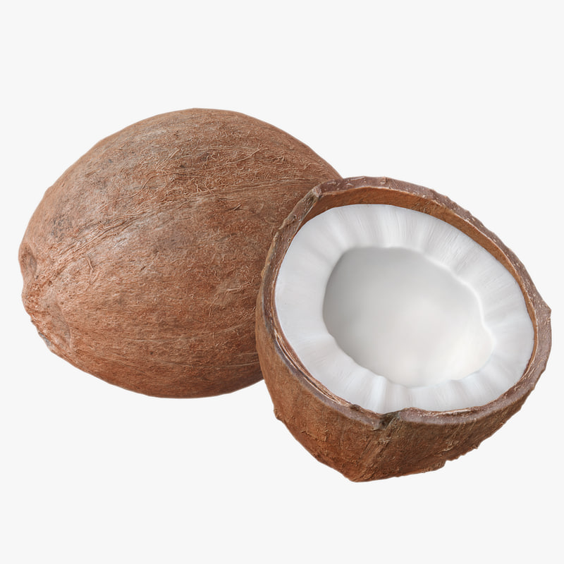 coconuts polys 3d model