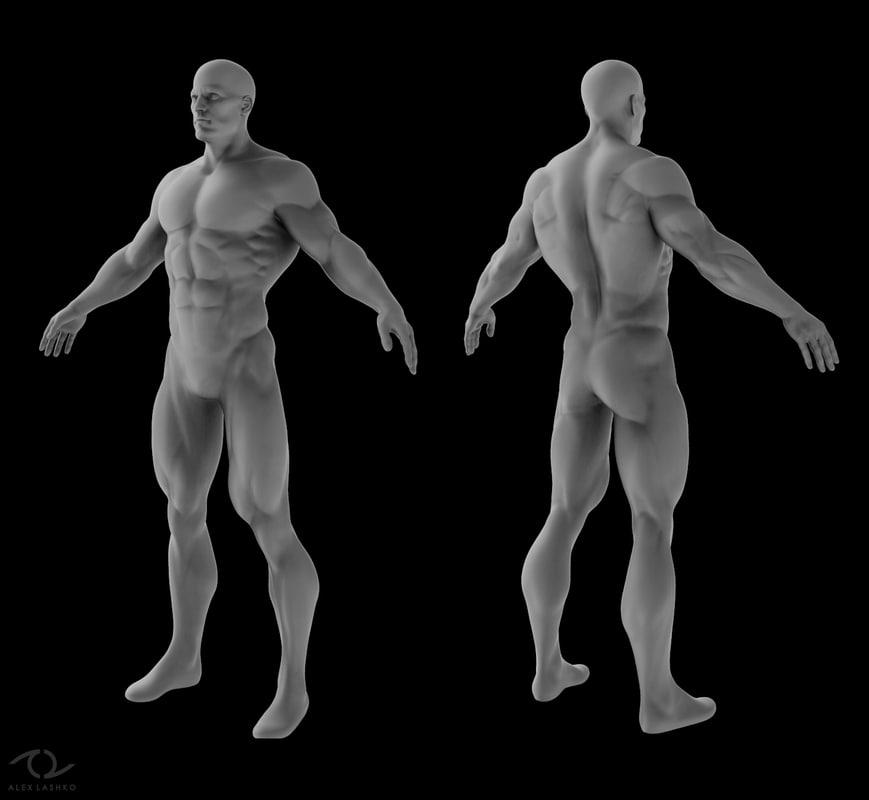 3d base mesh male superhero