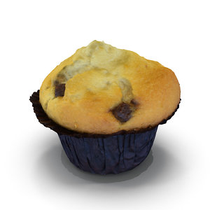 choc chip muffin 3d max