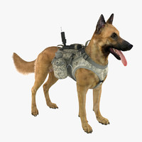Military Service Dog 2 (Fawn)