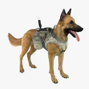 military dog 2 x