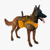 military dog 5 max