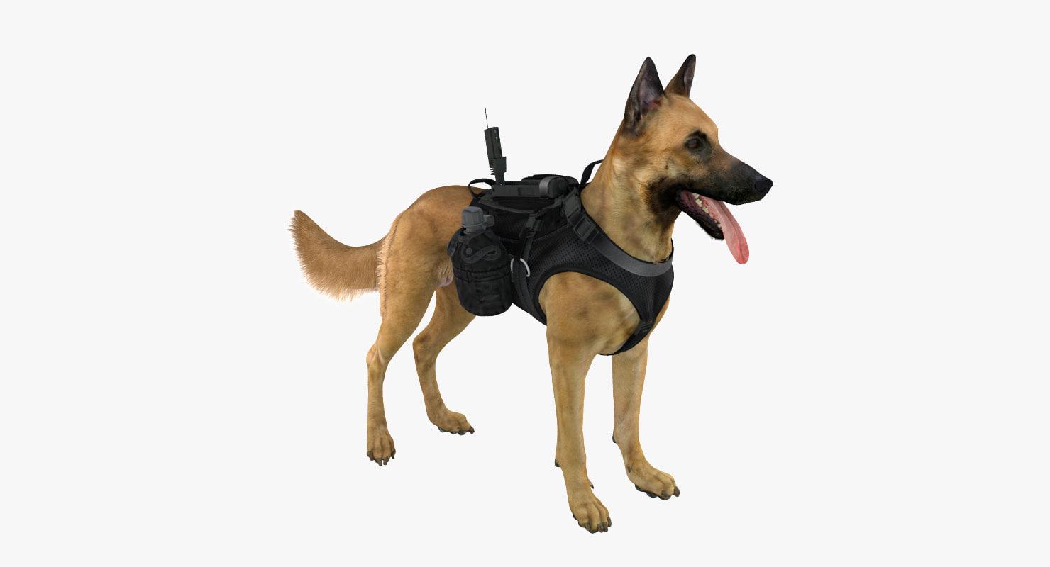 military dog 6 3d model
