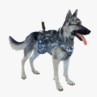 military shepherd dog 4 3d model