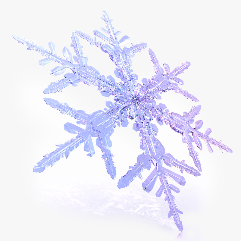 max snow flake snowflake