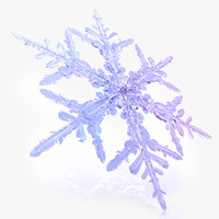 snowflake  3d model E