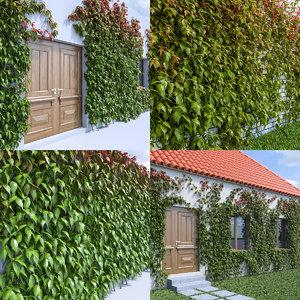 3d ivy leaf grass
