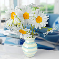 max daisie vase