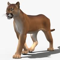 3d model cougar cartoon animation cat