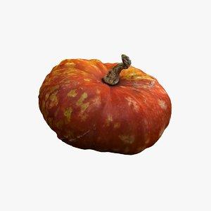 pumpkin 06 3d model
