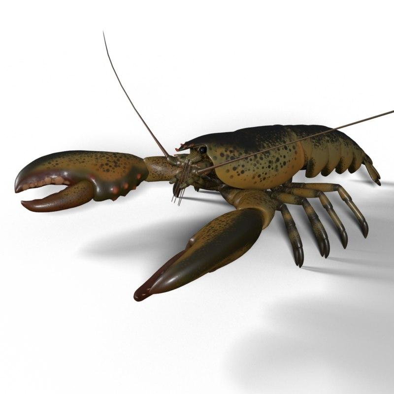 obj lobster