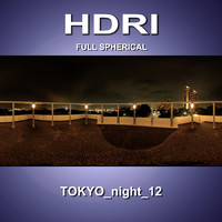 HDRI_Tokyo_night_12