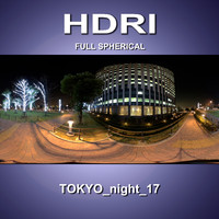 HDRI_Tokyo_night_17