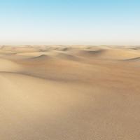 max desert sand
