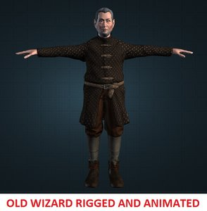 3d model old wizard