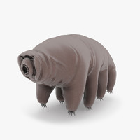water bear tardigrade max