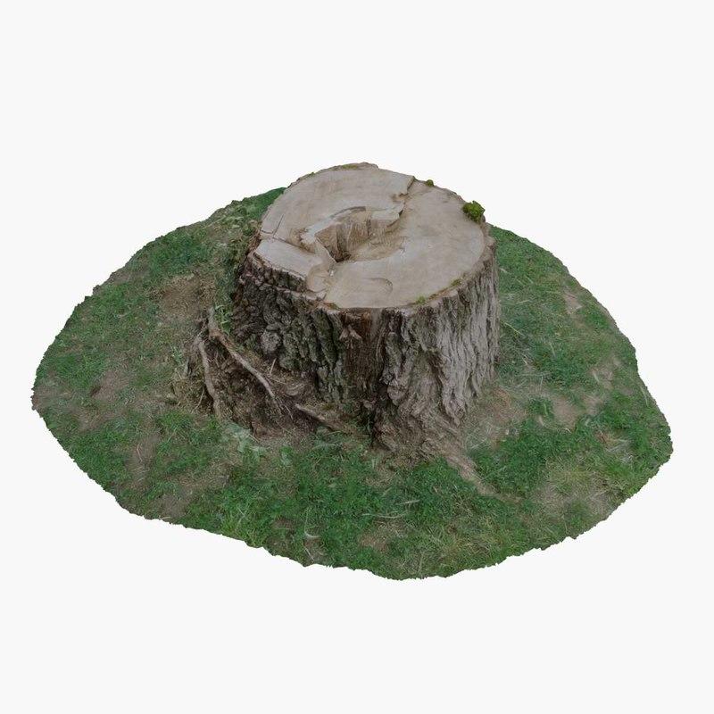 3d tree stump 18 model