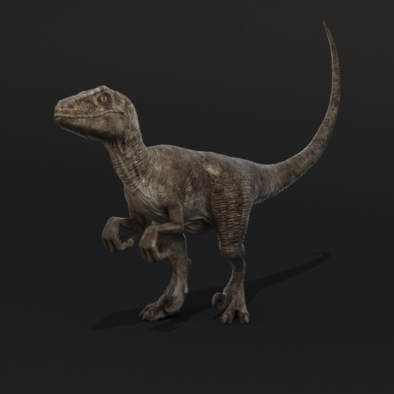 RaptorRigged.RGB_color.0001.png