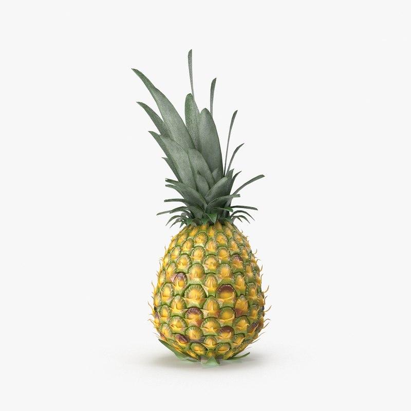 3d pineapple model