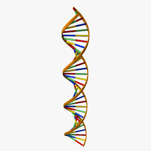 max dna double helix