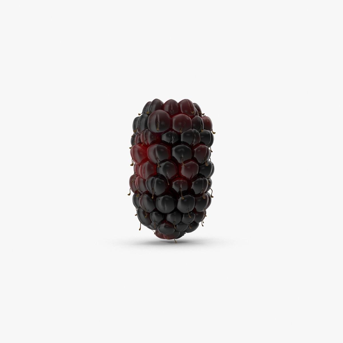 max boysenberry berry