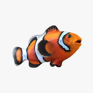 clownfish realistic max