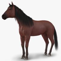 3d max horse fur