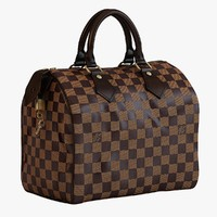 Louis Vuitton Speedy 25 Bag Checker Brown