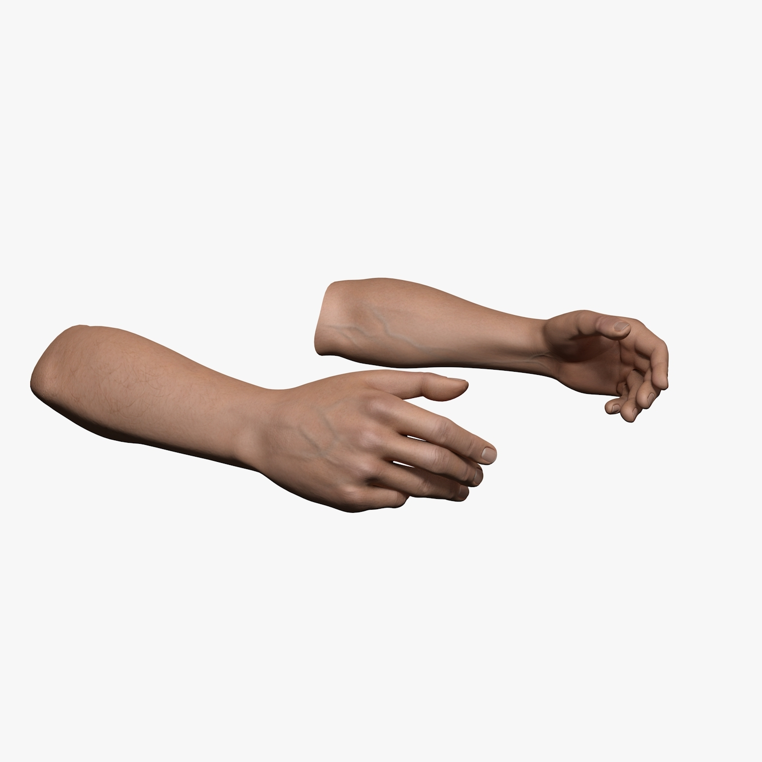 rigged human hands male 3d c4d