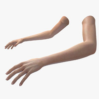 fbx realistic womans arms