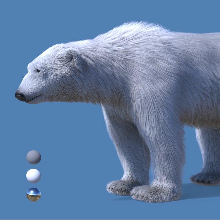 3d model realistic polar bear