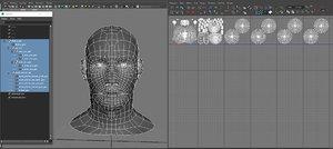 head base mesh symmetrical 3d model