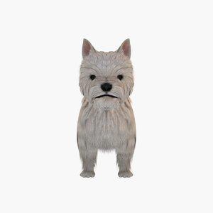 3d dog white terrier model