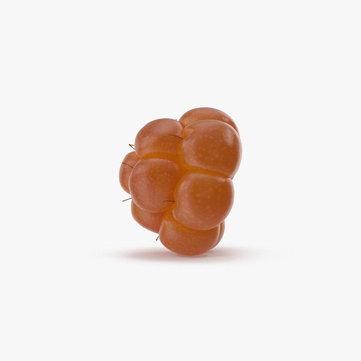 3d model cloudberry berry