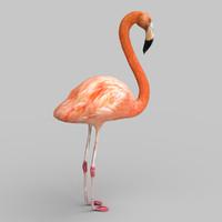 pink flamingo 3d fbx