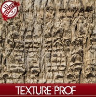 Palm Tree Bark Texture Hi-Quality Seamless