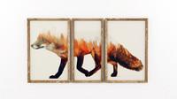 frame fox max