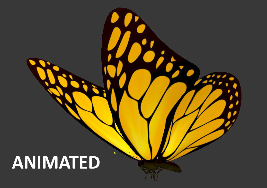 loop animation flying butterfly max