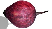 3d red beet model