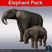 Elephant_pack
