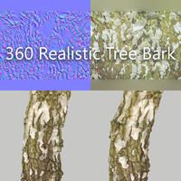 3d 360 tree bark