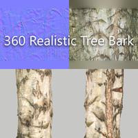 360 tree bark 3d obj