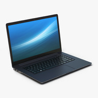 Generic Laptop 10